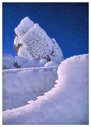 Mt_Field-Iced_boulders